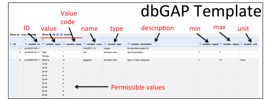 JHF - The D2Refine Platform for the Standardization of
