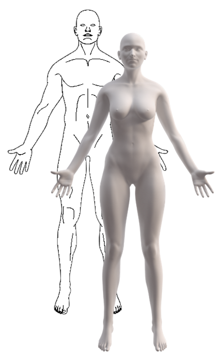 Jhf Do Gender Specific And High Resolution Three Dimensional Body Charts Facilitate The Communication Of Pain For Women A Quantitative And Qualitative Study Egsgaard Jmir Human Factors